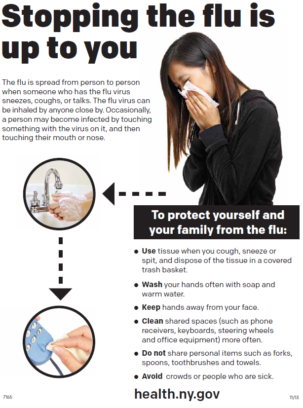 Stopping the flu is up to you (poster)