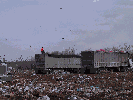 picture of MSW delivery trucks in the municipal landfill
