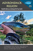 Link to view Adirondack Region Brochure