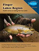 Link to view Finger Lakes Region Brochure