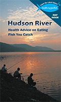 Link to view Hudson River Brochure