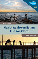 Hospice Of New York Long Island City Ny