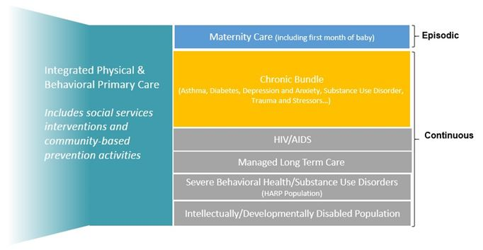 Integrated Physical and Behavioral Primary Care