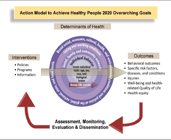 Action Model To Achieve Healthy People 2020 Goals
